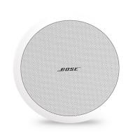 Bose FreeSpace DS100F