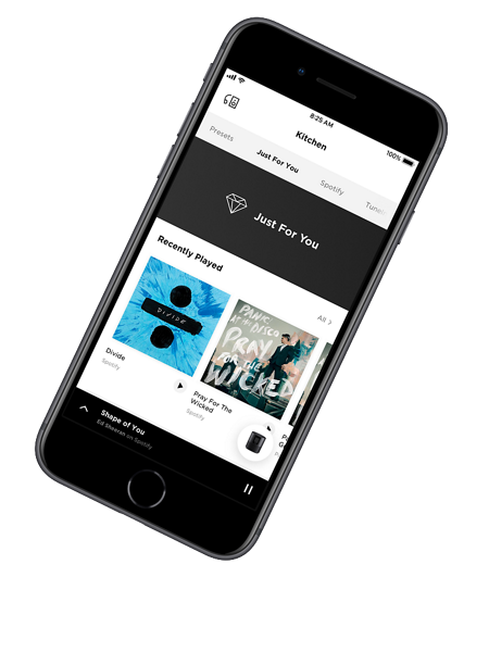 bose home speaker 300 app