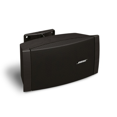 Bose FreeSpace DS100SE